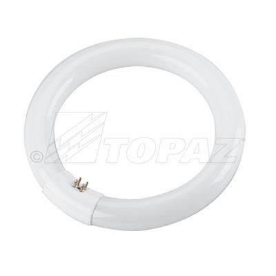 22w 8 Quot Cool White T9 Circline Fluorescent Lamp